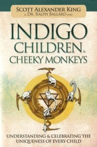 Indigo Children Cheeky Monkeys