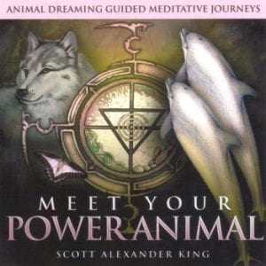 meet your power animal CD