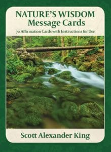 natures wisdom message cards